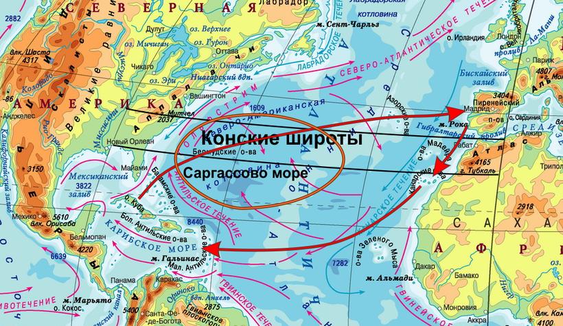 Где находится Саргасово море - на карте океанов? Чья территория?